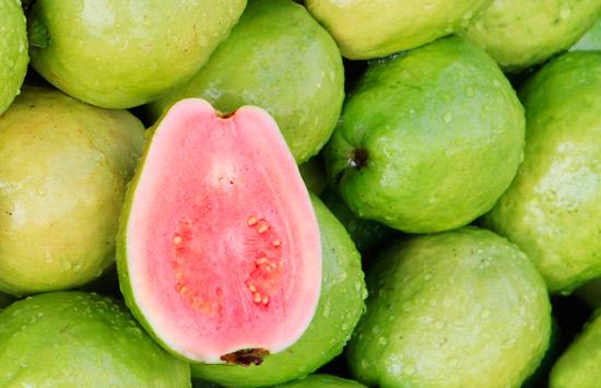 guava-550px